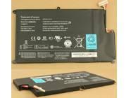 L10M4P11 121500059 batterie